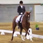 Video: Liaison and Jutta at the NI Champs, 2013