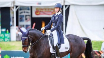 Lessing progeny named in Dressage NZ Squads