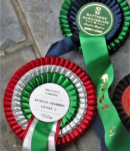 Fire n' Ice was Level 2 Reserve Champion at the Taihape Dressage Trounament on December 15, 2019.