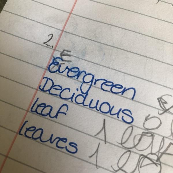 Mummy's Corrected Handwriting