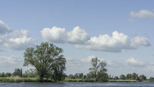 Biesbosch 2014-20