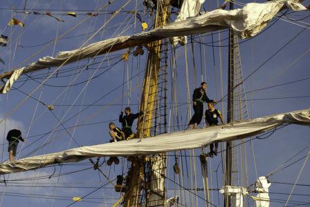 Sail Amsterdam 2010-12