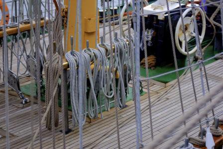 Sail Amsterdam 2010-2