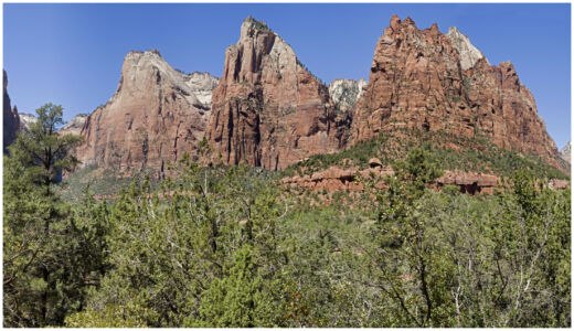 Zion National Park Court Of The Patriarchs Panorama