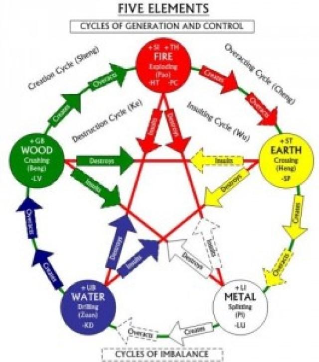 sheng cycle