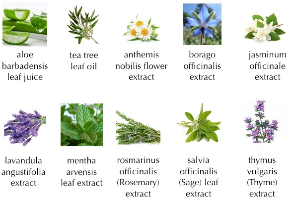 10 extract from Aloe Bubble Cleanser