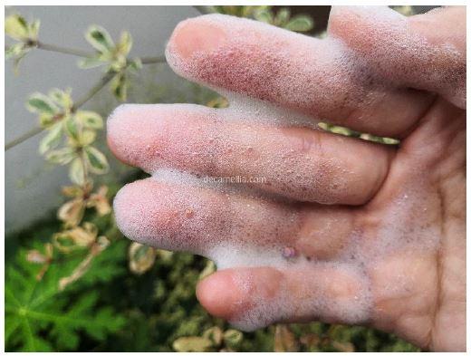 Pencuci Muka Aloe Vera Yang Bersih dan Tak Mengeringkan Kulit 5