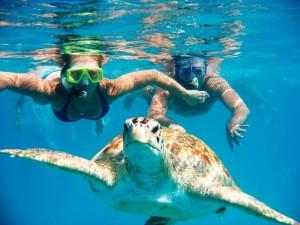 tours srilanka diving4