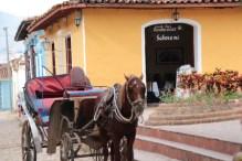 trinidad-plazamayorwest-horse