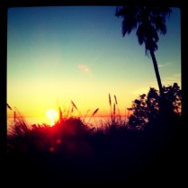 Hans' Milieu - The First iPhoneography Exhibition in South Africa - Submission - Californian Sunset