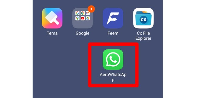 Review WhatsApp Aero