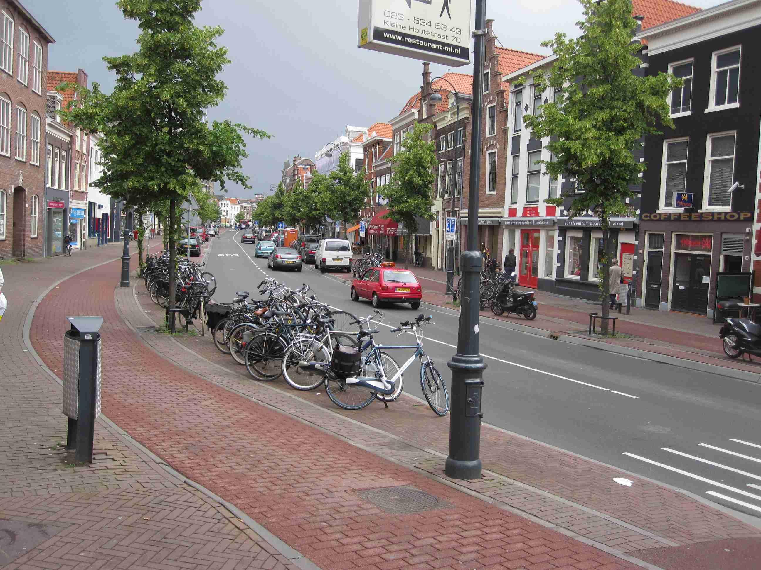2011 06 seg bike lanes  01