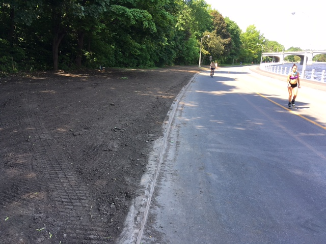This dirt stretch could accommodate a shift away from the canal.
