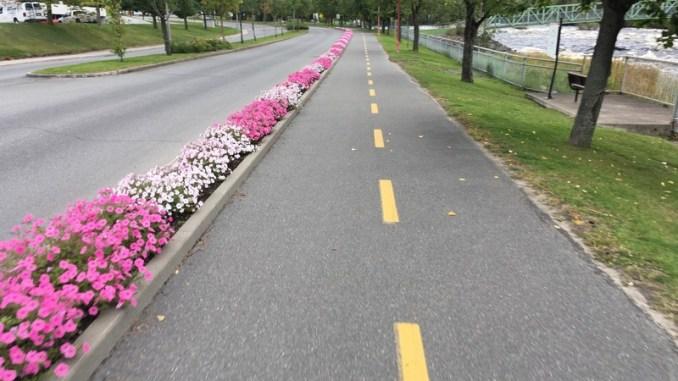 Cycling in Alma