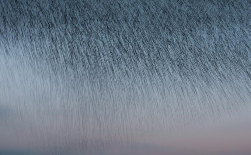 vallende spreeuwen