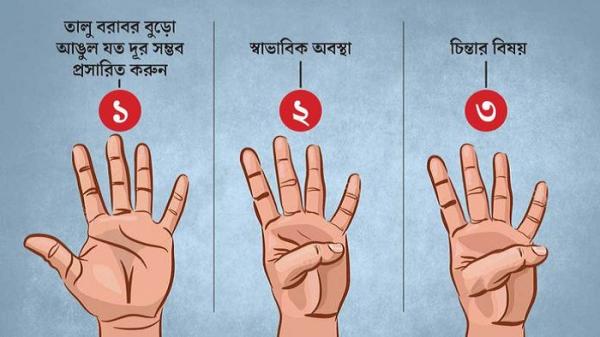 1631689856_finger-2109160506