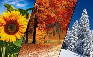 Saisonaler Filter Kalender