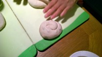 One finished snail shell
