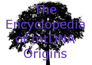 Mitochondrial genome variation and the origin of modern humans