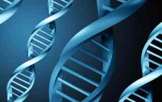 DNA Testing for genetic genealogy and more