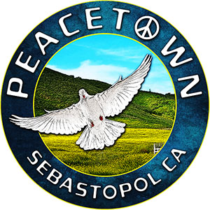 Peacetown Summer Concert