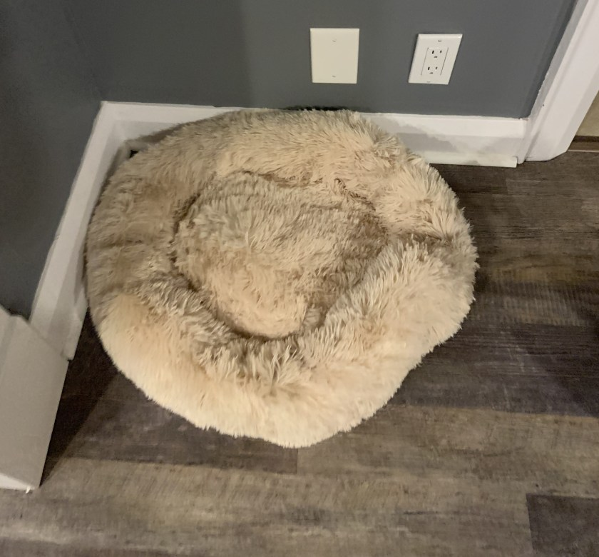 The DogPetSmart Dog Calming Bed in cream colour size small for dogs up to 25lbs.