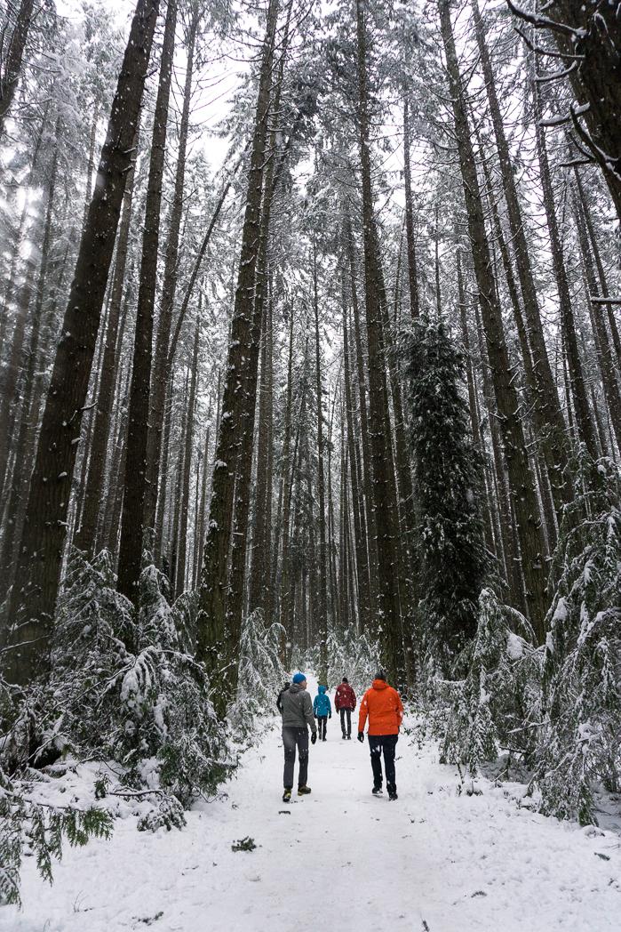 Winter walk in Pacific Spirit Park, Vancouver, BC. Find out how to stay warm and have fun with these 8 tips for winter hiking.