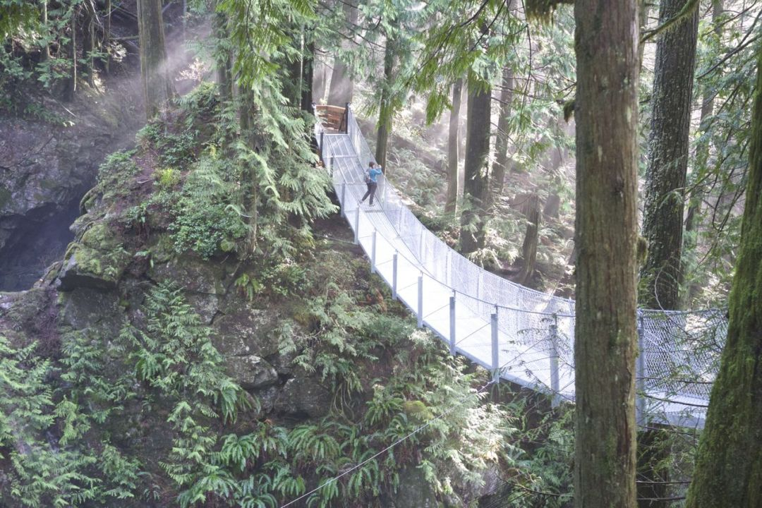 Suspension Bridge at Cascade Falls