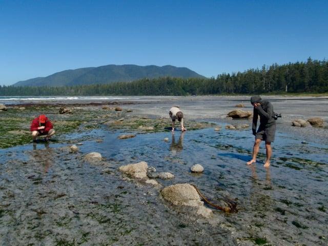 Beachcombing on the Nootka Trail