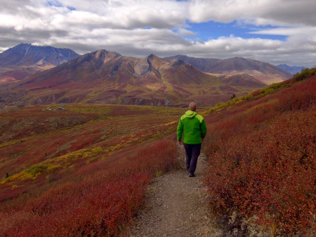 Fall colours in Tombstone Territorial Park