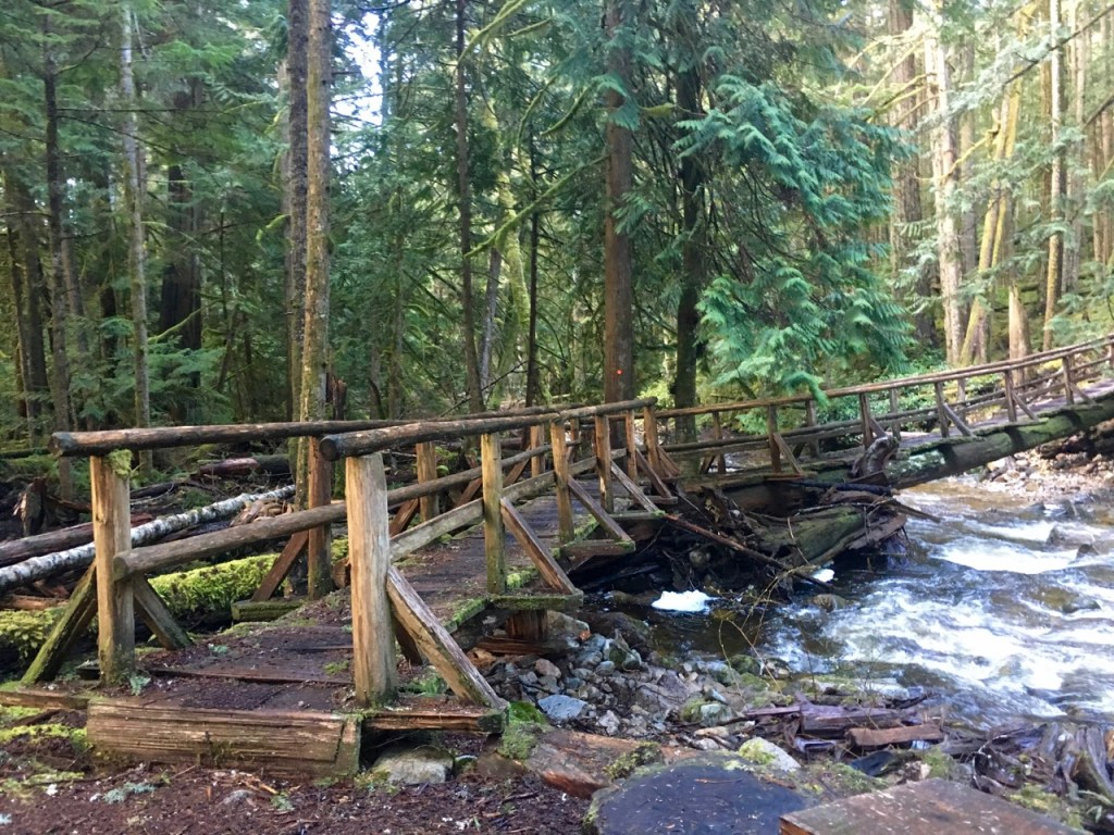 Backpacking the Sunshine Coast Trail - Appleton Creek