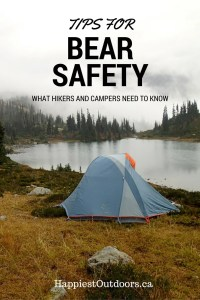 Tips for Bear Safety: What Hikers and Campers Need to Know