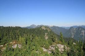 Thunderbird Ridge at Grouse Mountain. One of 6 easy hikes in Vancouver for beginners and tourists that deliver gorgeous west coast nature, with minimal effort. Plus they're transit accessible!