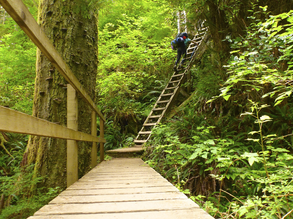 Hiking the West Coast Trail, Pacific Rim National Park. Find out when to reserve this trail: BC Backpacking Reservation dates you need to know