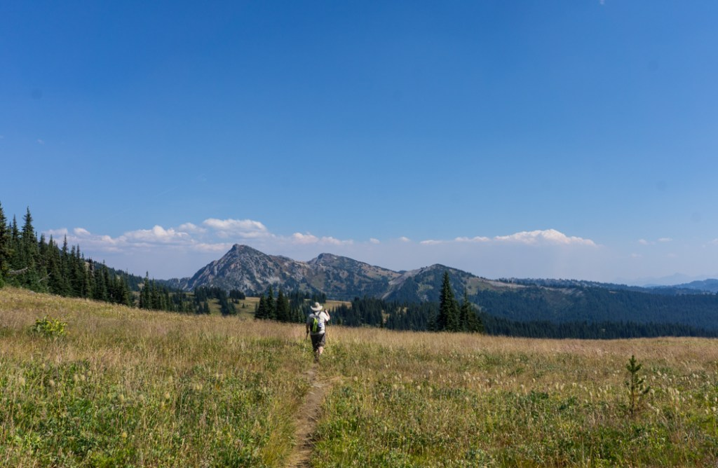 Hiking in alpine meadows on the Heather Trail in Manning Provincial Park, BC, Canada
