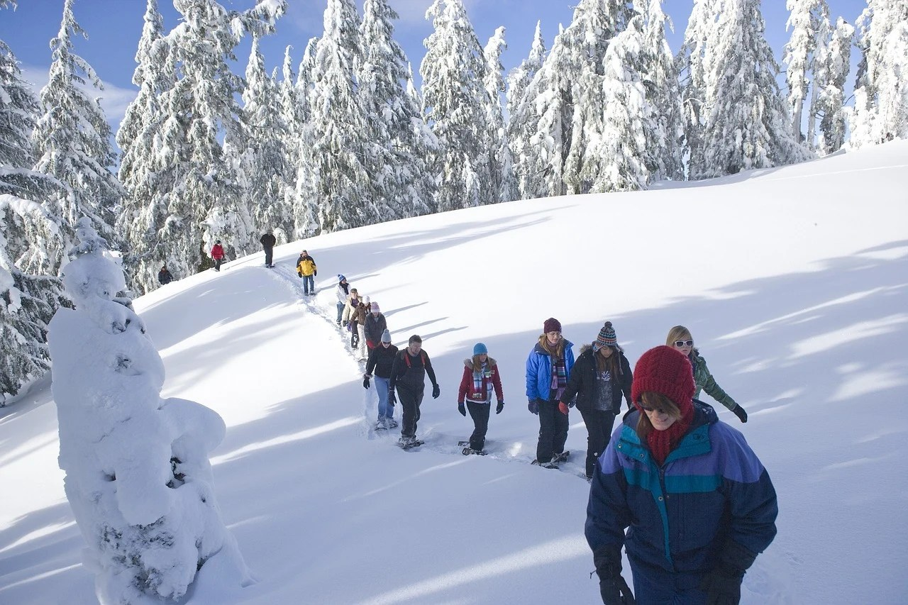 the ultimate guide to snowshoeing in manning park: 10 places to go