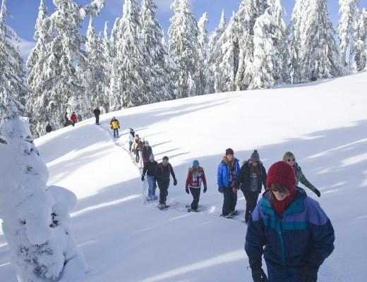 Snowshoeing at Manning Park