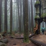 15 Unusual Hikes Near Vancouver