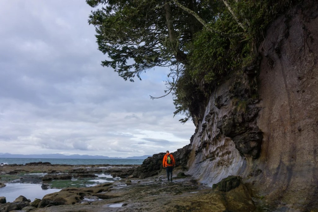 Explore Botanical Beach at low tide on the Pacific Marine Circle Route.