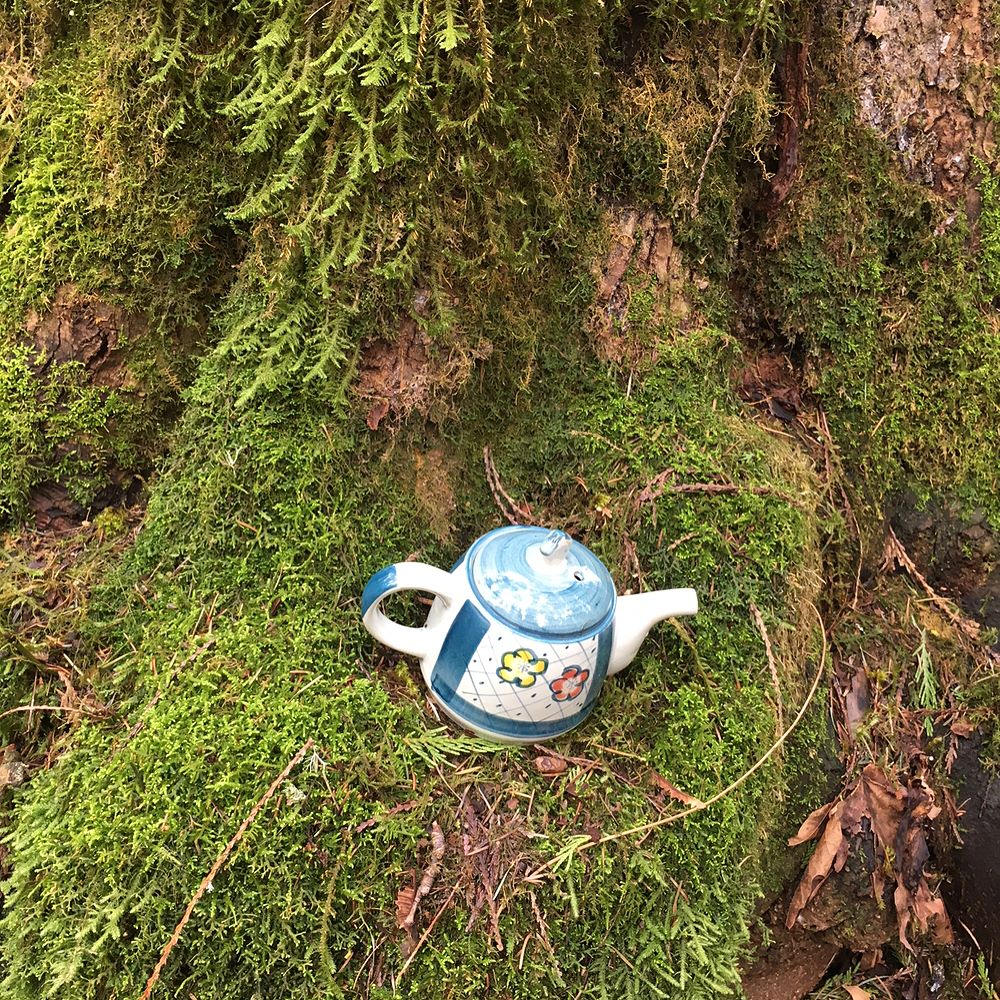 A teapot along the Teapot Hill trail in Chilliwack. Just one of 15 unusual hikes near Vancouver.