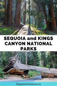 Things to do in Sequoia and Kings Canyon National Parks in California. Includes where to hike, see the sequoia trees and go for scenic drives.