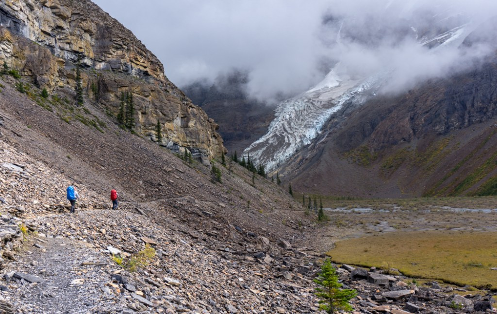 Hiking near Marmot campground on the Berg Lake Trail. The Ultimate Guide to Hiking the Berg Lake Trail in Mount Robson Provincial Park in the Canadian Rockies