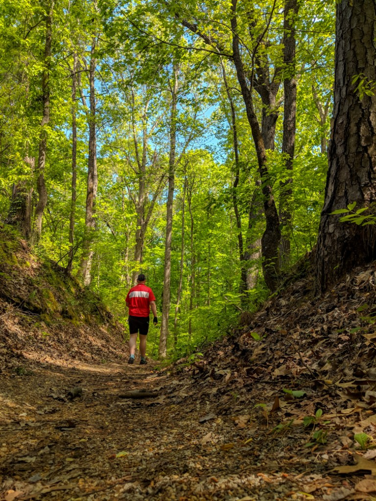 Walking a section of the historical old Natchez Trace. Learn how to cycle tour the Natchez Trace Parkway in this detailed guide.