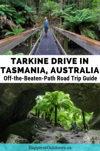 Road trip on the Tarkine Drive in Tasmania, Australia. A guide to this off the beaten path destination with a complete itinerary and map.