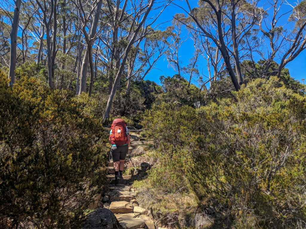 Heading towards Du Cane Gap on the Overland Track. Get your info on the standard 6-Day Overland Track Itinerary plus lots of itinerary options for 4 to 12 day trips.