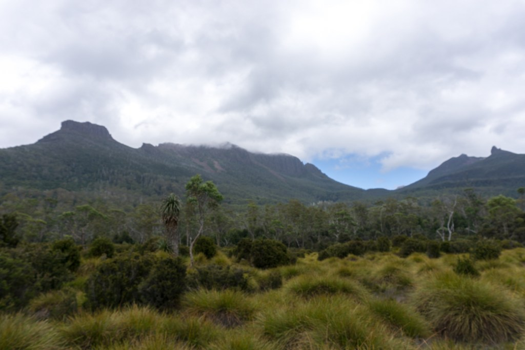 The view from Frog Flats on the Overland Track. This is the only Overland Track campground that isn't next to a hut.