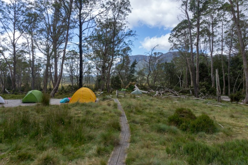 Pelion campground on the Overland Track.