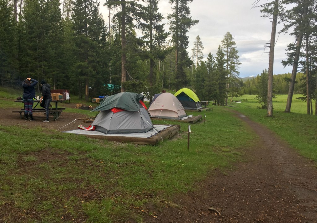 Camping at Norris Campground in Yellowstone National Park