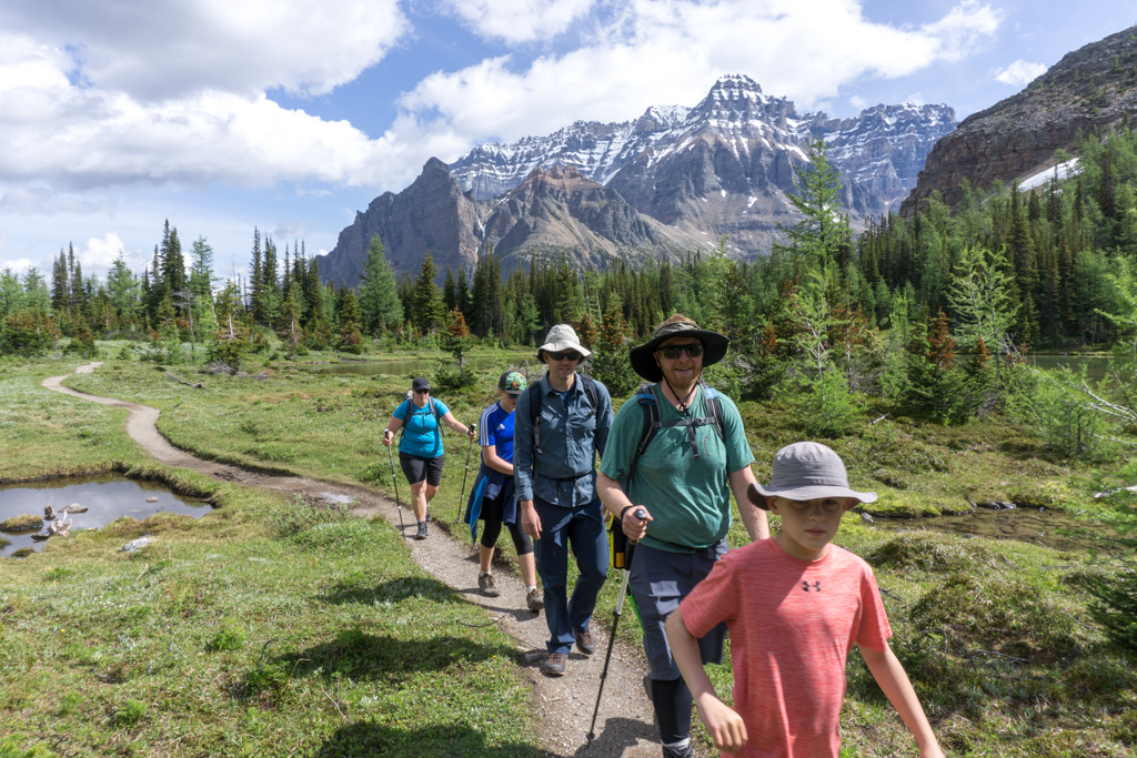 A group of hikers wearing quick-drying hiking clothing walks along the Alpine Meadows Trail near Lake O'Hara in Yoho National Park