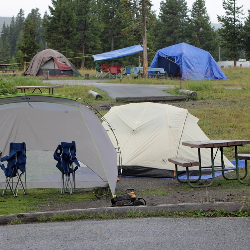 Tents at Bridge Bay campground in Yellowstone National Park